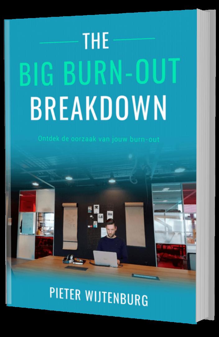 Burn-out oorzaak ebook Pieter Wijtenburg